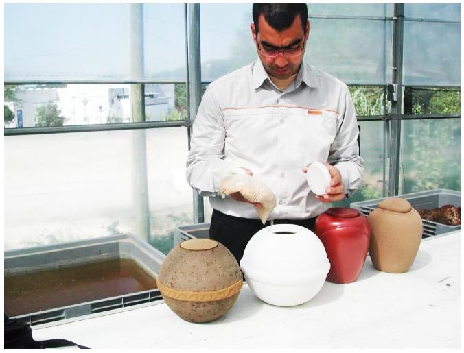 Preparación de las urnas en el invernadero de la Universidad de Girona