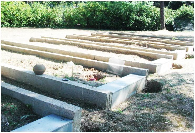 Degradación de las eco urnas en el suelo