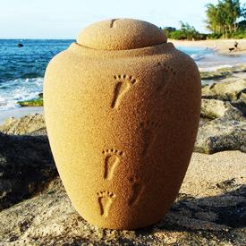 urnas ecologicas biodegradables para distribuir
